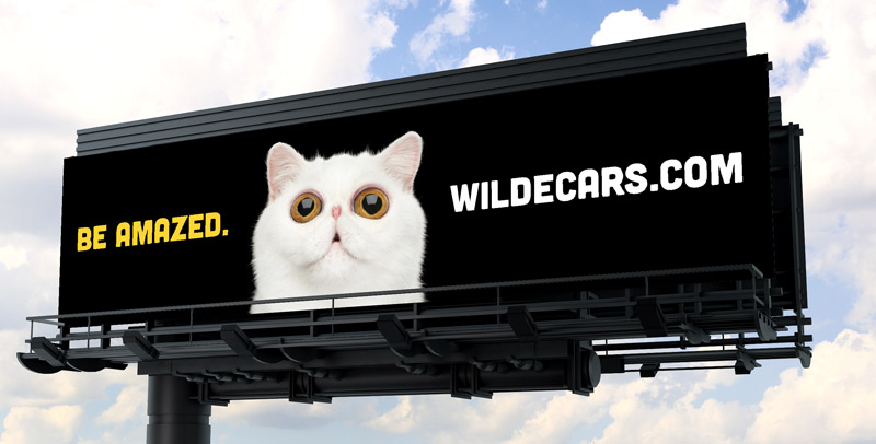 Wilde Cars billboard